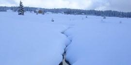 Lednová zemětřesení na Šumavě 6.1. a 12.1.2020, obě M 1,8