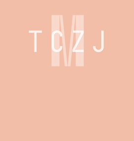 Segment o otevření programu TCZJ v ČT