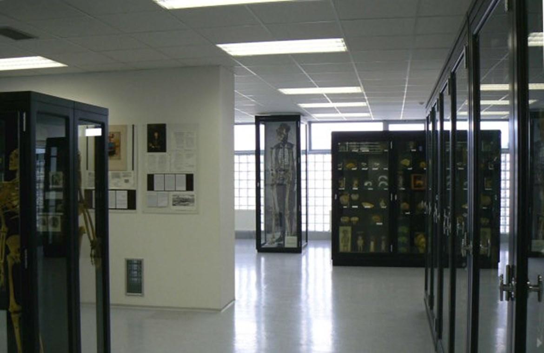 Pohled do Anatomického muzea profesora Karla Žlábka (vzadu kopie kostry moravského obra Josefa Drásala)