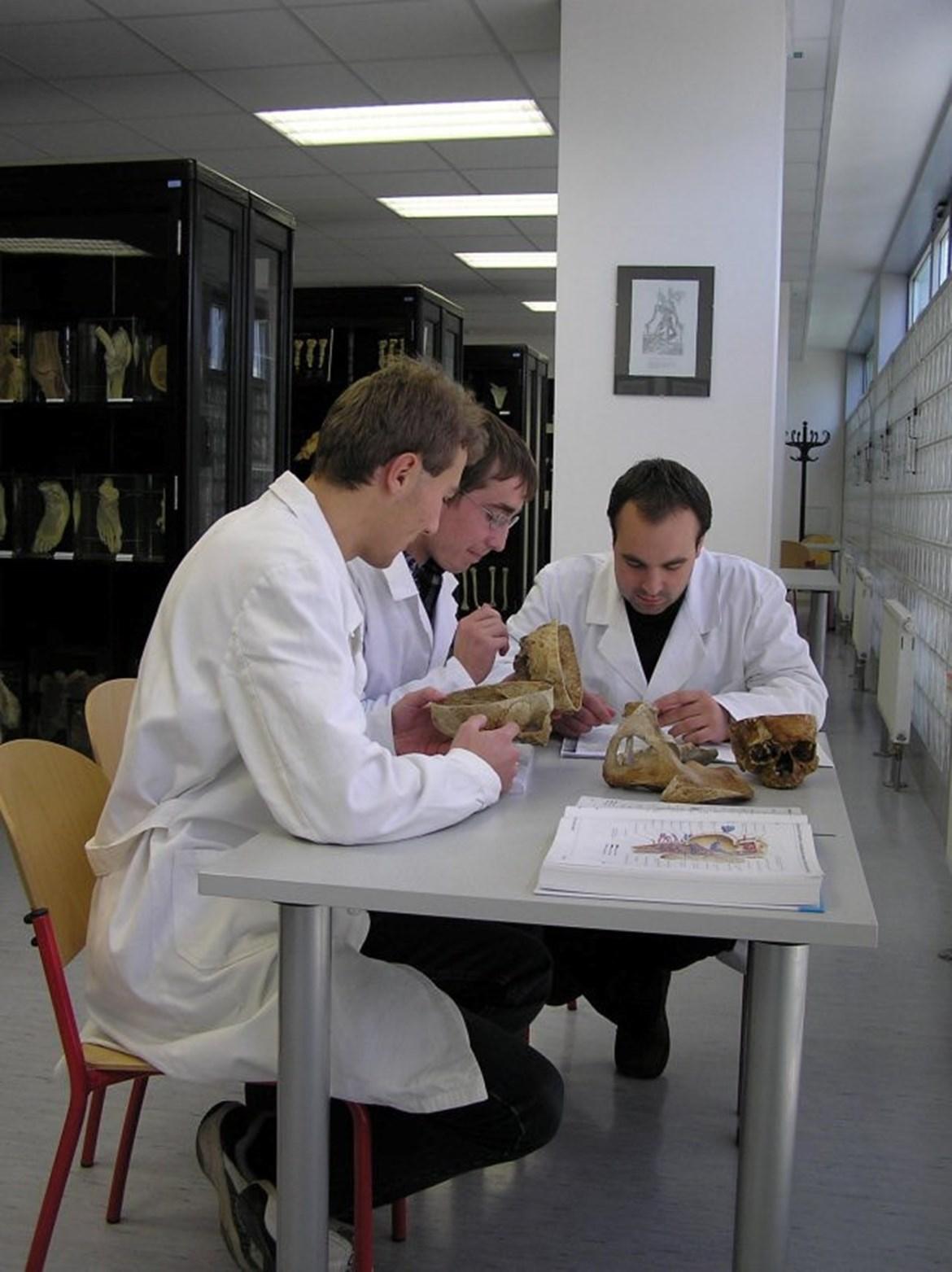 Preparáty v Anatomickém muzeu profesora Karla Žlábka slouží k výuce studentů medicíny