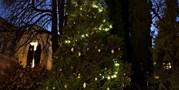 Nová tradice: rozsvěcování vánočního stromu na Kotlářské