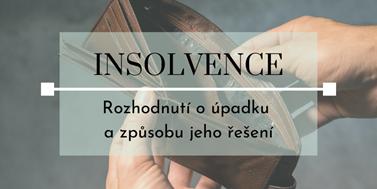 Seriál o insolvencích: Rozhodnutí o úpadku a způsobu jeho řešení