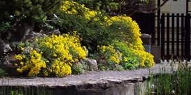Botanická zahrada se opět otevírá návštěvníkům