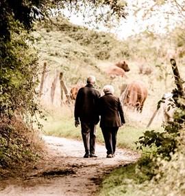 Stárnutí a prostředí