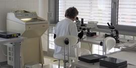 Publikace výzkumné skupiny buněčné a molekulární neurobiologie na Anatomickém ústavu LF MU