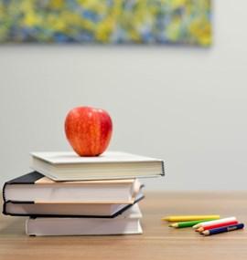Pracovní schopnost učitelů