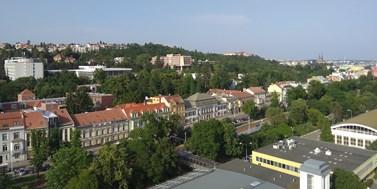 Studium v Brně