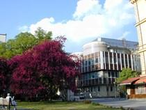 Building  FMed, SAUH, Pekařská 53, Pavilion A3