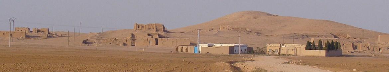 Tell Arbid Abyad, Sýrie 2010.