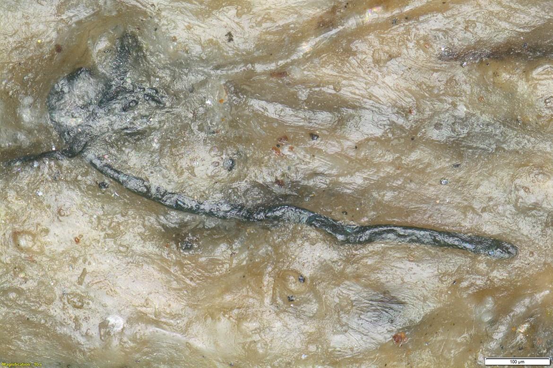 Identifikace mikroreziduí na archeologických artefaktech.