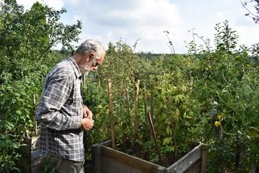 V důchodu by se Vlašín chtěl věnovat více své permakulturní zahradě. Foto: Eliška Podzemná