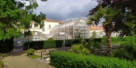 Rekonstrukce v botanické zahradě