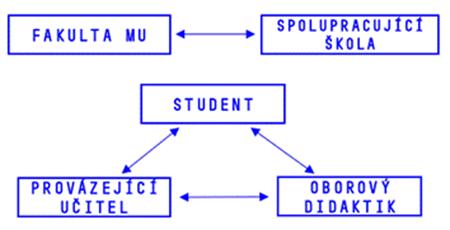 schema didaktici