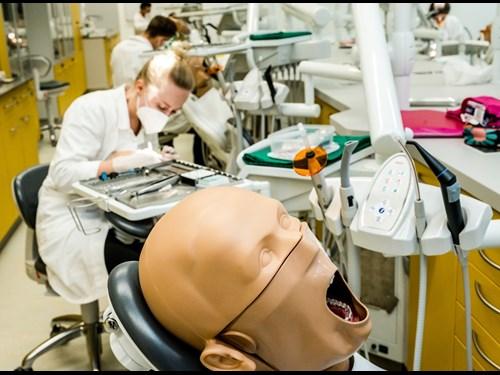 Simulační centrum Lékařské fakulty MU: výuka Zubního lékařství