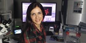 Prestižní ocenění MUNI SCIENTIST pro dr. Zuzanu Koledovou z Ústavu histologie a embryologie
