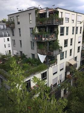 Spreefeld - realizovaný projekt participativního bydlení. Foto: Jenny Pickerill.