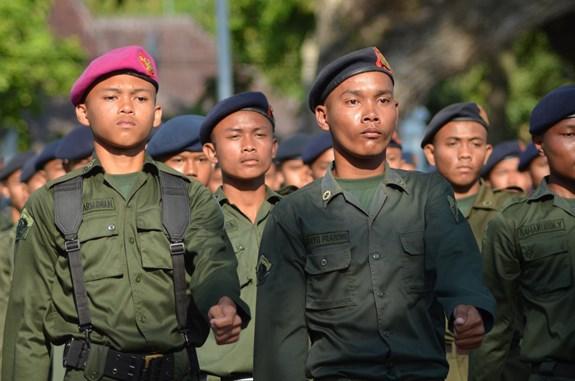 Vojáci při nástupu, Mantara Rose, Google, CC0