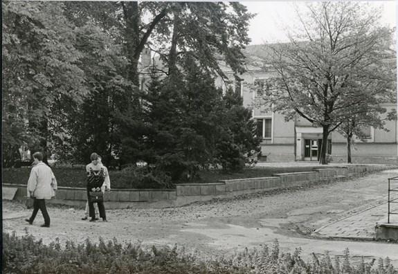Prostor parčíku před děkanátemPřírodovědecké fakulty MU naKotlářské ulici a budova č. 7 (v pozadí).Foto: Archív MU, nedatováno.