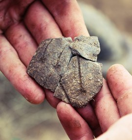 Neolitheam