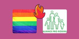 K relevanci názorových táborů legalizace manželství stejnopohlavních párů