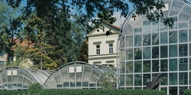 The same point of view: MU Faculty of Science then and now – the area in front of the greenhouses