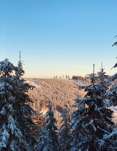 Views from Horský resort Dolní Morava