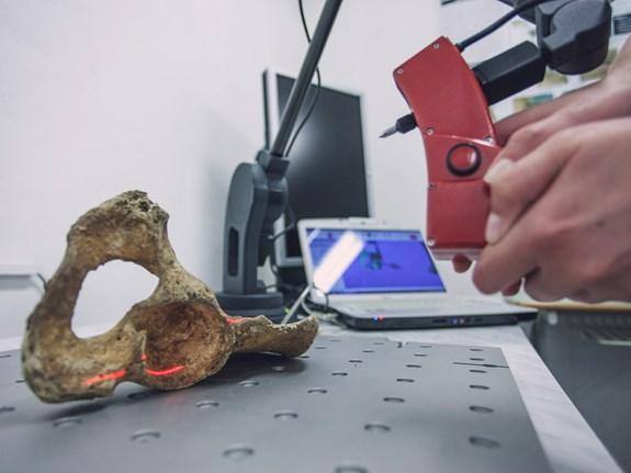 Analýza a identifikace kosterních nálezů neznámého původu