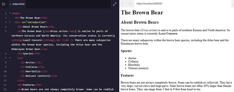 Ukázka HTML kódu webové stránky