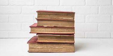 Digitalizované kulturní dědictví: potenciál pro rozvoj gramotností a kompetencí (nejen) v knihovnách