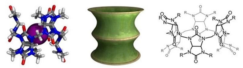 Krystalová struktura bambusurilu suvnitř vázaným aniontem jodidu, podobnost bambusurilu sčástí kmenu bambusu a strukturní vzorec bambusurilu.