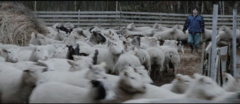 Jedním z letošních nesoutěžních filmů bude snímek Vlci na hranicích režiséra Martina Páva. Zdroj: archiv autora