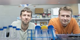 Pharmaceutical companies team up to develop cancer drugs from MU