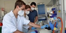 Mladí vědci z MU útočí bakteriofágy na infekce