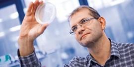 Odborníci z Muni hledají užitečné enzymy pomocí počítačů a robotiky