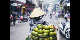 Filozofická fakulta MU nově nabízí studium jazyka a reálií Vietnamu