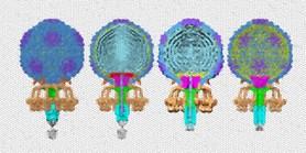 S antibiotickou rezistencí pomůžou bakteriofágy