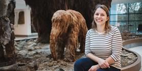 V žaludcích mamutů našli vědci krajinu doby ledové