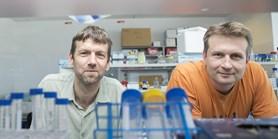 Do vývoje onkologických léčiv z MUNI se zapojila farmaceutická firma