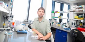 Masaryk University researchers supported by the British Wellcome Trust